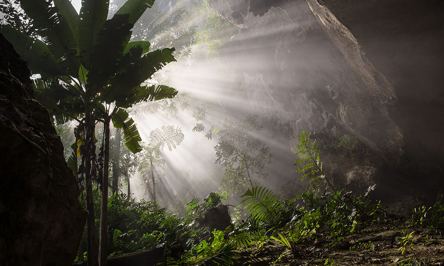 how to go to son doong cave