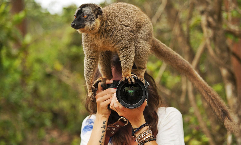Смешные люди животные картинки