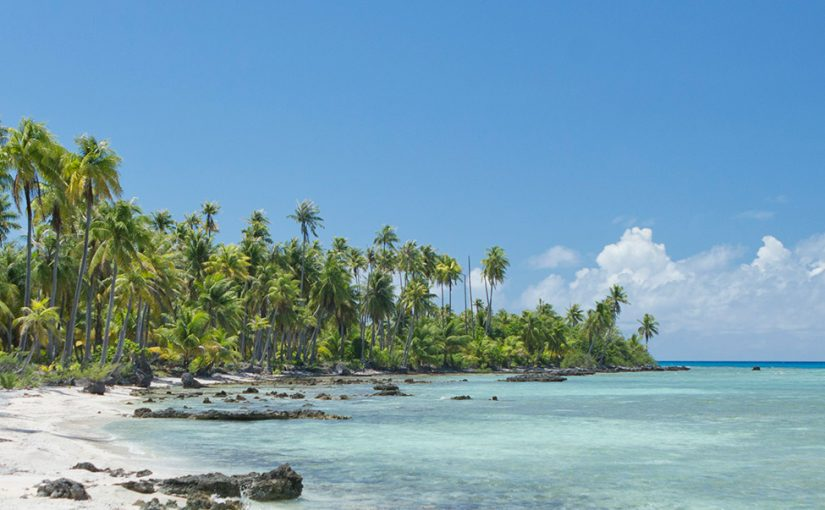 Sand, sea and vines in French Polynesia